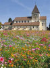 Quelle: Georgskirche in Reichenau © jehafo – Adobe Stock